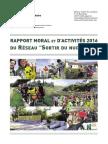 """Rapport d'activité 2016 - Réseau """"Sortir du nucléaire"""""""