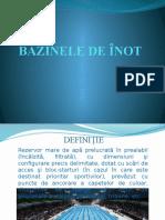 BAZINELE DE ÎNOT.pptx