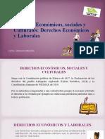 Derechos Económicos y Laborales