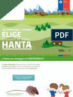 Presentacion Hanta