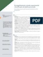 Microagulhamento Estudo Experimental e Classificacao Da Injuria Provocada