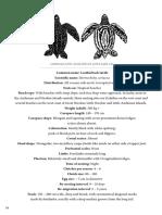 Sea Turtle ID Plates (7 Jenis Penyu)