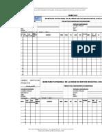 Anexos y Formatos Directiva 17