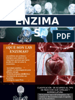 ENZIMAS (Bioquímica)