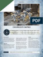 Chameleon Skinks