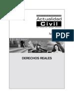 DERECHOS REALES.pdf