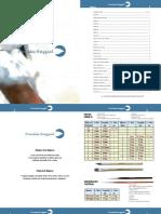 PINCELES.pdf