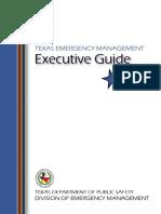 execGuide.pdf