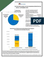 Electioneering Gap Report