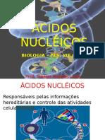 acidos_nucleicos 2