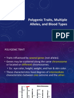 polygenic traits multiple alleles and blood types