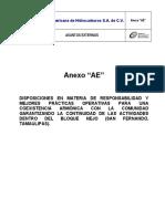 ANEXO AE