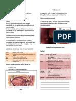 1. Cavidad Oral.pdf