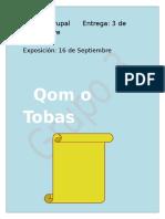 Trabajo Practico Los Tobas (Qom)