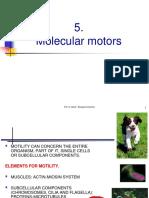 5.Molec Motors