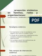 La Intervención Sistémica en Familias, Redes y Organizaciones