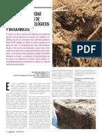 Estudio de La Calidad de Suelo a Traves de Analisis Microbiologicos y Bioquimicos