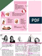 Triptico cancer de mama
