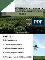 Pragas Versao Rodrigo Jose_Final