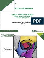 Desarrollo Fetal de Los Anexos Oculares