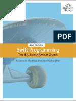 Swift Programming the Big Nerd - Mathias Matthew