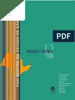 LIVRO_MACIEL, L E BAENINGER, R. região central.pdf