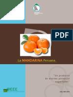 Inf-Mandarina-Final.pdf