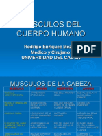 musculosdelcuerpohumano-110218203723-phpapp01