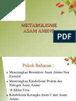 Biosintesis Asam Amino 2015