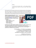 136719435-Investigacion-Explicativa.docx