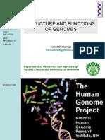 Structure Function Genome Dr Kanadi
