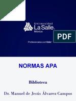 Normas Bibliográficas APA