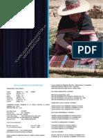 CENAQ_curriculo_regionalizado (1).pdf