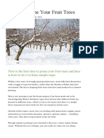 How to Prune Your Fruit Trees - Modern Farmer