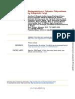 Biodegradation of Polyester Polyurethane by Endophytic Fungi