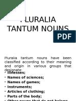 Seminar Concurs Pluralia Tantum Nouns