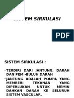 1. Sistem Sirkulasi