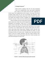 Asma Anatom Fisio Dan Pato
