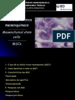 Celulas_tronco Ratos Transgenicos e MSCs