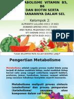Tugas Klp Metabolisme Vitamin b5, b6
