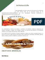Carbohidratos y Proteínas Su Papel en El Medio Ambiente