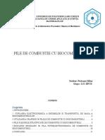 Proiect Electrochimie Pile de Combustie Pruteanu Mihai