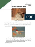 10 Hewan Dengan Jarak Migrasi Terjauh