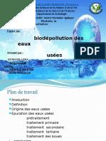 biodépolution ppt