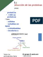 07 Aminoacidos y Proteinas