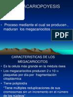 2 megacario,granulopoyesis