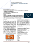 Duocap.pdf