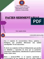 Tema 7 Facies Sedimentarias