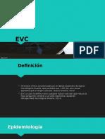 04. EVC