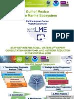 Gulf of Mexico Ecosystem U.N. 2009